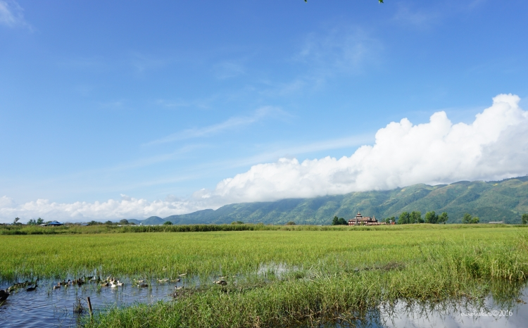 inle17