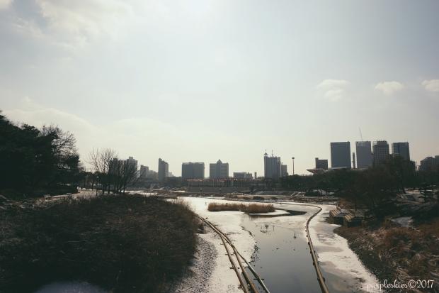seoul_22